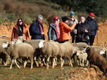 2016 Jakobsweg 36 Camino III 375x281 - Jakobsweg 2016