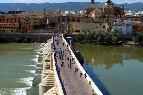 23 Cordoba R0016677 555x370 - Andalusien 2014