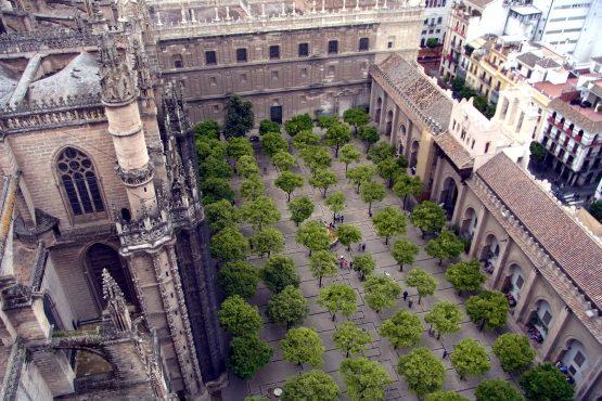 43 Sevilla Kathedrale Orangenhof R0017145 555x370 - Andalusien 2014