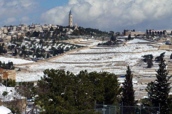 67 Jerusalem Ölberg R0022197 555x370 - Israel 2015