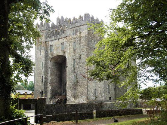 Fahrten 2018 Irland 27 Bunratty Castle RFH R0042545 555x416 - Irland 2018