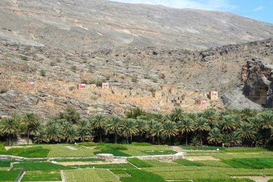 Fahrten 2019 Oman 26 Wadi Ghul RFH R0044743 555x370 - Oman 2019