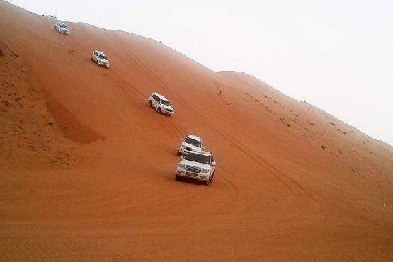 Fahrten 2019 Oman 30 Wahiba Wüste Hasi 20190218 175814 555x370 - Oman 2019