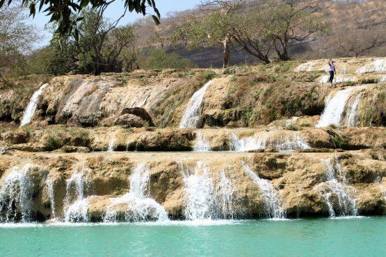 Fahrten 2019 Oman 60 Wadi Darbat RFH R0045298 555x370 - Oman 2019